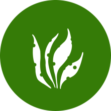 Plant Doctor Apps