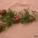 fig2 rust gall