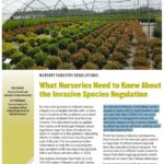 What Nurseries Need to Know About the Invasive Species Regulation? New Publication for Nursery Growers