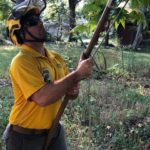 Certified Arborists can provide the best care for your trees.